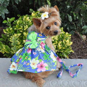 Apparel - Blue Lagoon Hawaiian Hibiscus Dog Dress With Matching Leash