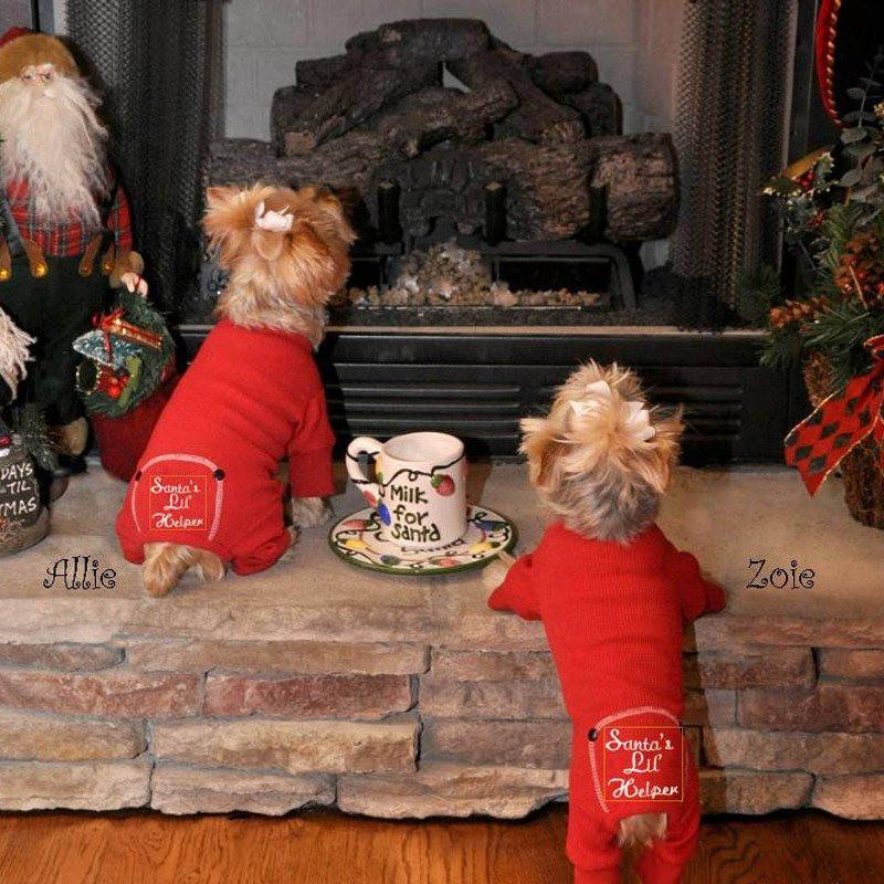 Santa's Lil Helper Dog Pajamas - Yorkies