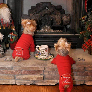 Christmas Pajamas for Dogs