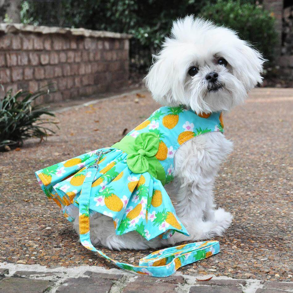 Pineapple Luau Dog Dress - Model