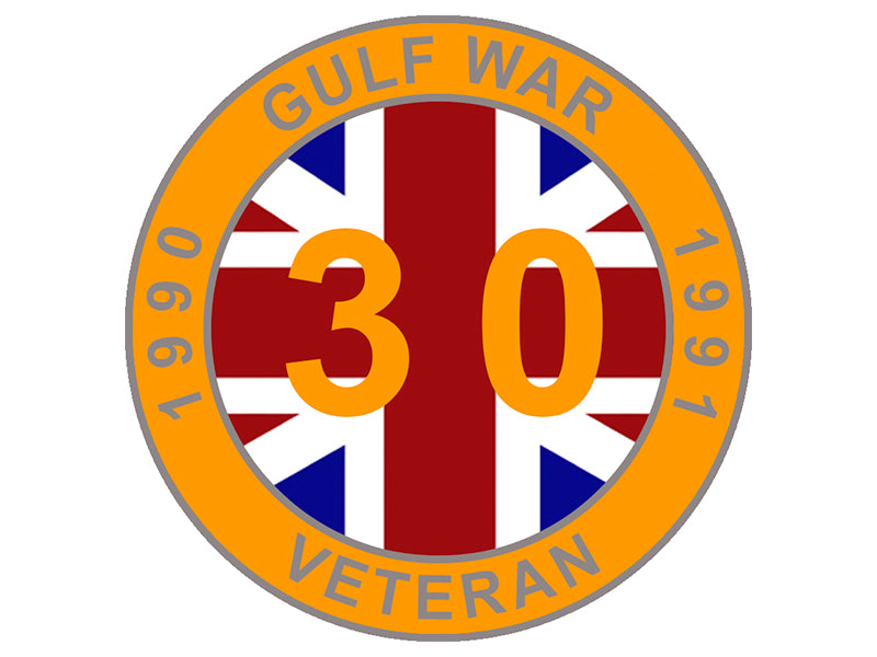Gulf Veteran Lapel Pin