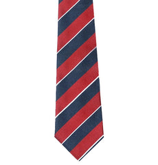 1st The Queen's Dragoon Guards Silk Tie
