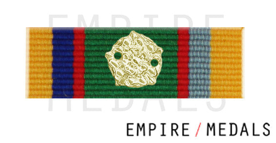 Cadet Forces Medal Ribbon Bar with Silver Rosette