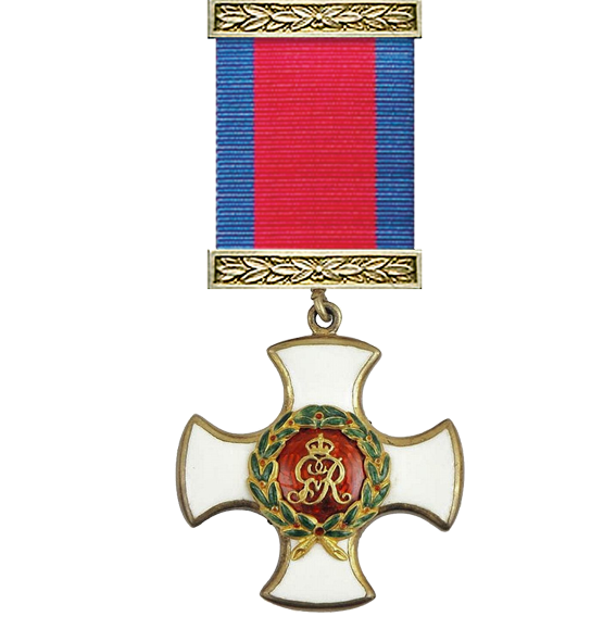 Distinguished Service Order George V and ribbon