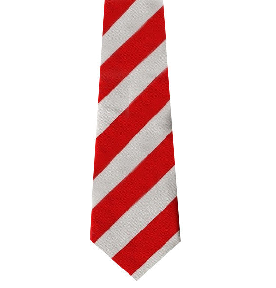 The Queens Bays Silk Tie