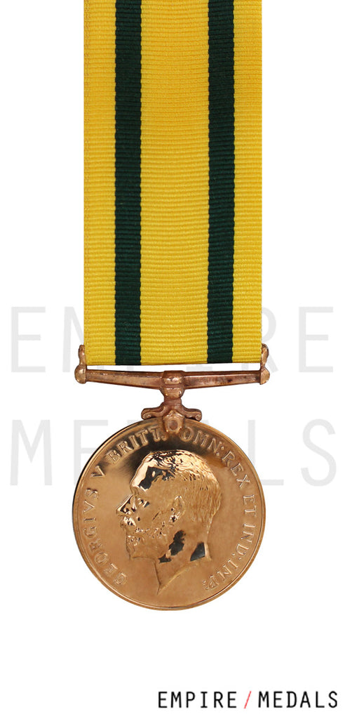 Miniature Territorial Force War Medal