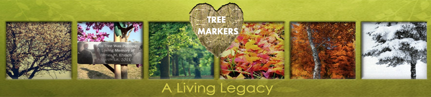 A FAMILY TREE -  Dedicate a Tree with Engraved Tree Plaque