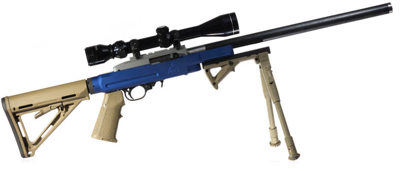 PMACA 10/22 chassis rifle