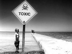 Infographic: The Toxicity of Surfing