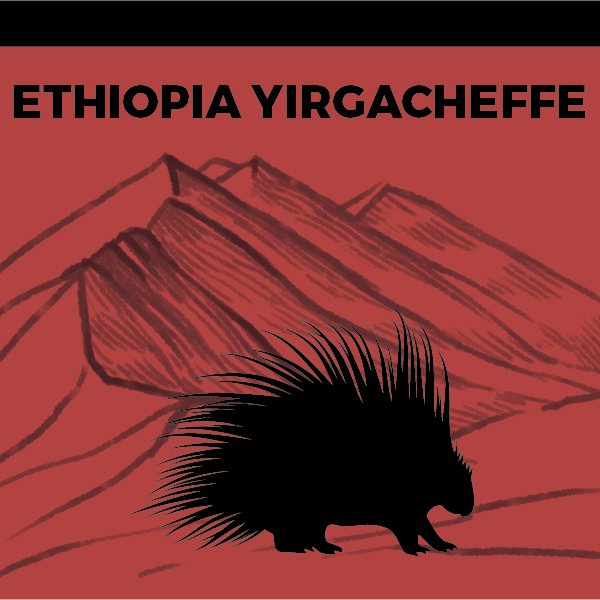 Load image into Gallery viewer, Ethiopia Yirgacheffe