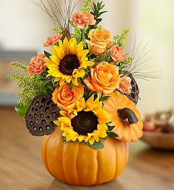 A Sunflower Halloween