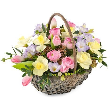 Basket - Soft Spring Basket