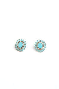 Floral Crystal Stud Earrings - Blue