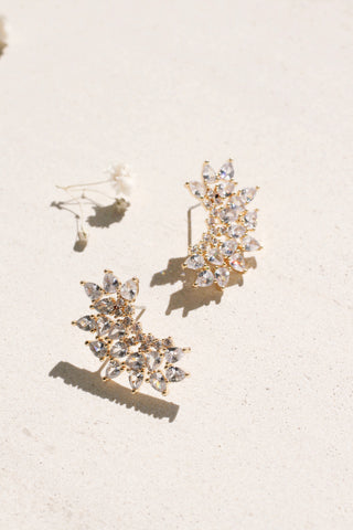 Sparkly Statement Crawler Earrings