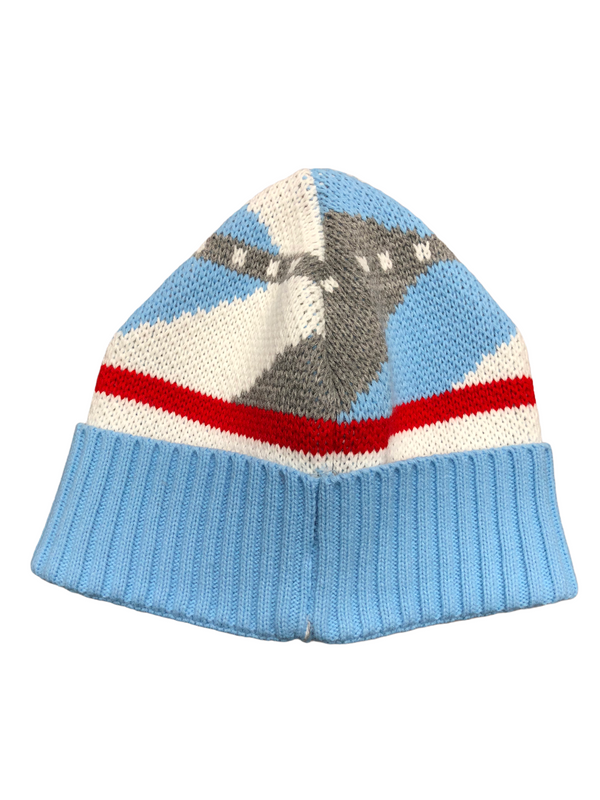 Ice Beanie Hat (Ice/Gray)