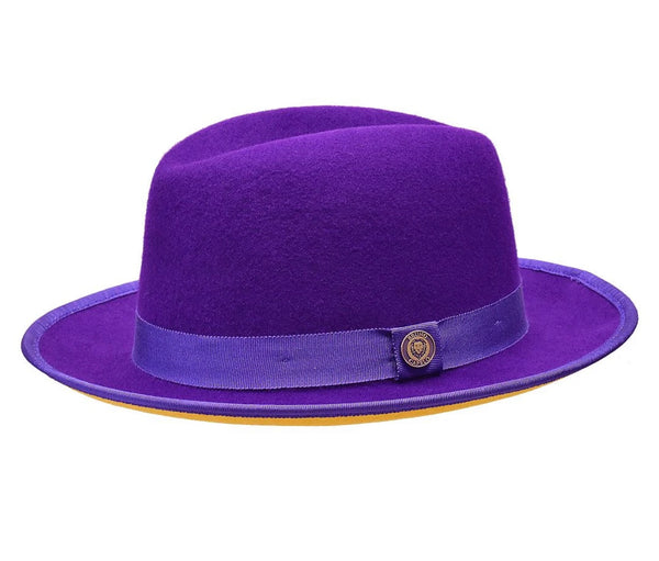 LIMITED EDITION Bruno Hat Princeton (Purple/Gold)
