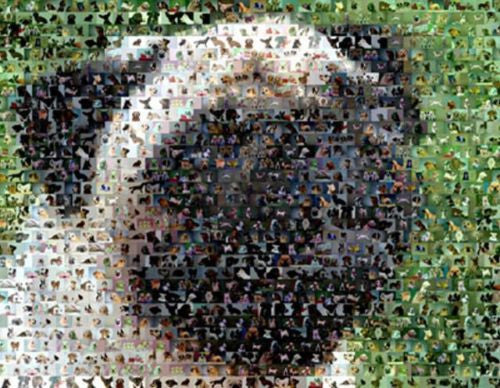 Amazing Pug Dog Montage Limited Edition art print COA , Pug - n/a, Final Score Products  - 1