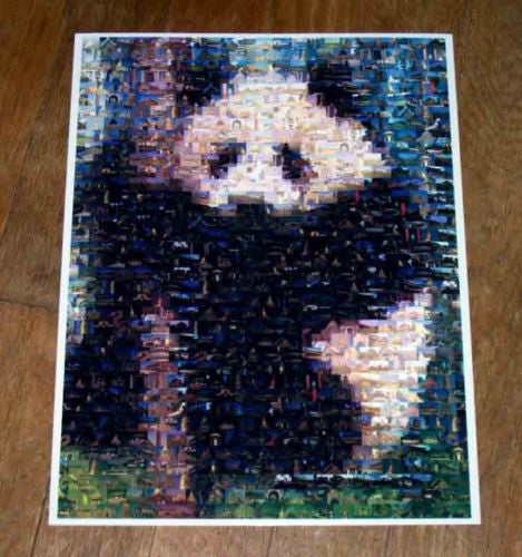 Amazing PANDA Bear Wild Animals Montage , Pandas - n/a, Final Score Products  - 1