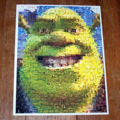 Amazing SHREK animals Montage coolest ever. #ed to 25 , Shrek - n/a, Final Score Products  - 1