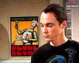 FRAMED The Big Bang Theory Sheldon Apt. Robot mini Poster PETRE DEVOS , Reproductions - n/a, Final Score Products  - 2