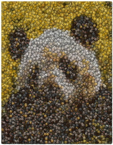 Gold Panda Bear Coins Mosaic Art Print Limited Edition