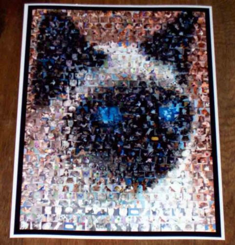Amazng Siamese Cat Montage Limited Edtion Art Print COA , Other - n/a, Final Score Products  - 1