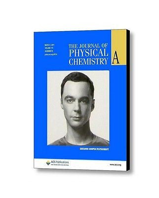 The Big Bang Theory Sheldon Cooper Journal of Physical Chemistry Framed prop , Reproductions - n/a, Final Score Products