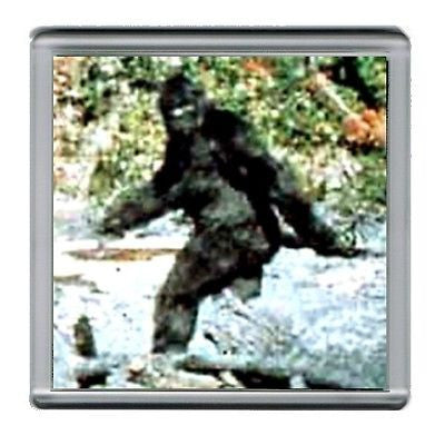 Bigfoot Yeti Sasquatch Coaster 4 X 4 inches
