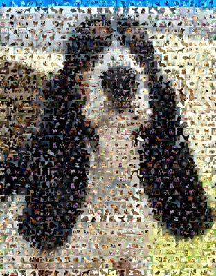 Basset Hound Dog Mosaic Print Limited Edition