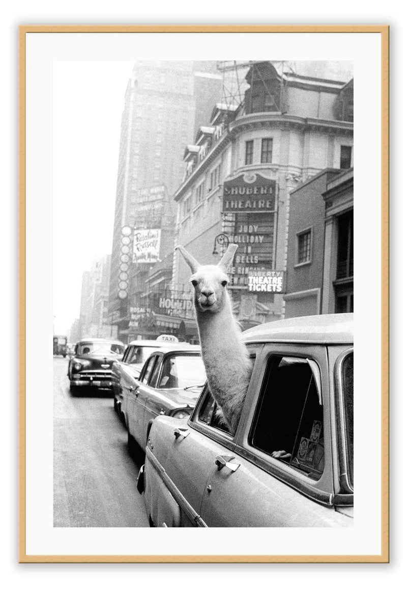 Lama New York Taxi Kids Room Car Black And White Old Town Road Print Wall Print Framed Art Poster Image Online Photo Painting