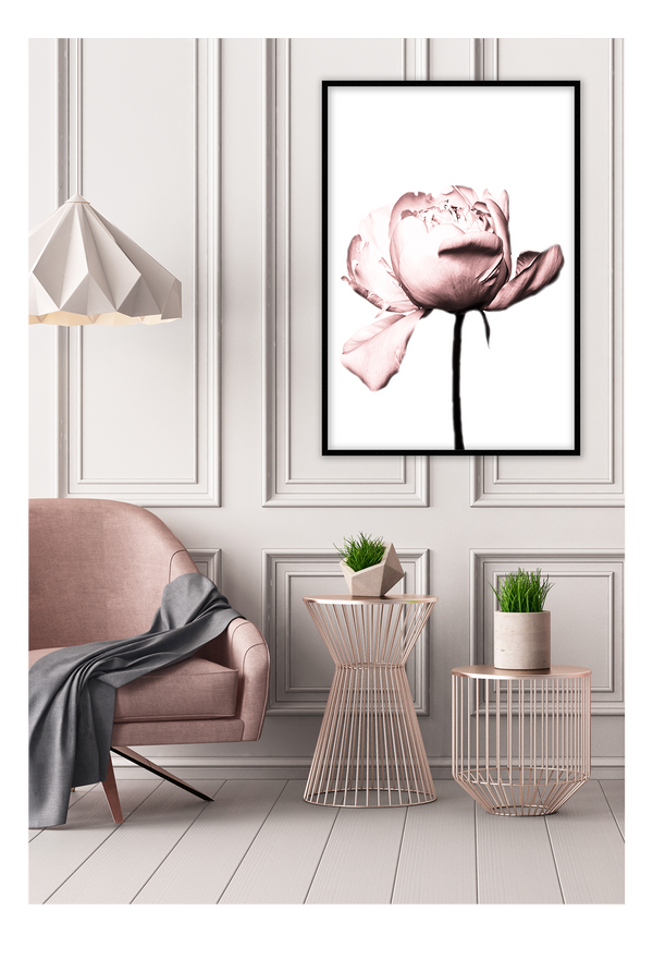 Vintage Rose Flower Pink Nature Floral Print Wall Print Framed Art Poster Image Online Photo Painting Living Lounge Bedroom