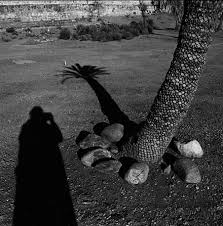 Graciela Iturbide, Naturata 1996-2004