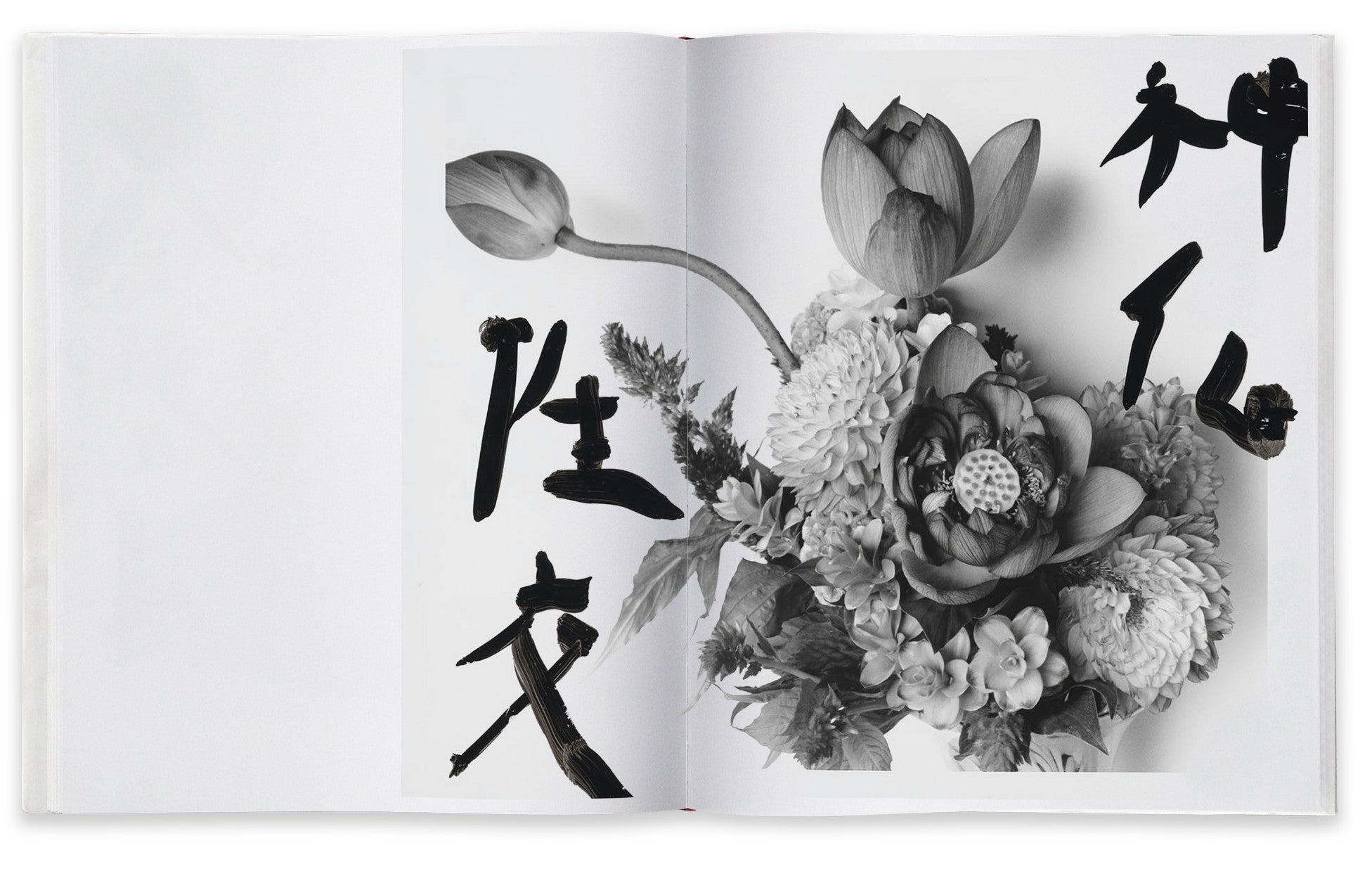 Nobuyoshi Araki, Marvelous Tales of Black Ink - Claire de Rouen Books