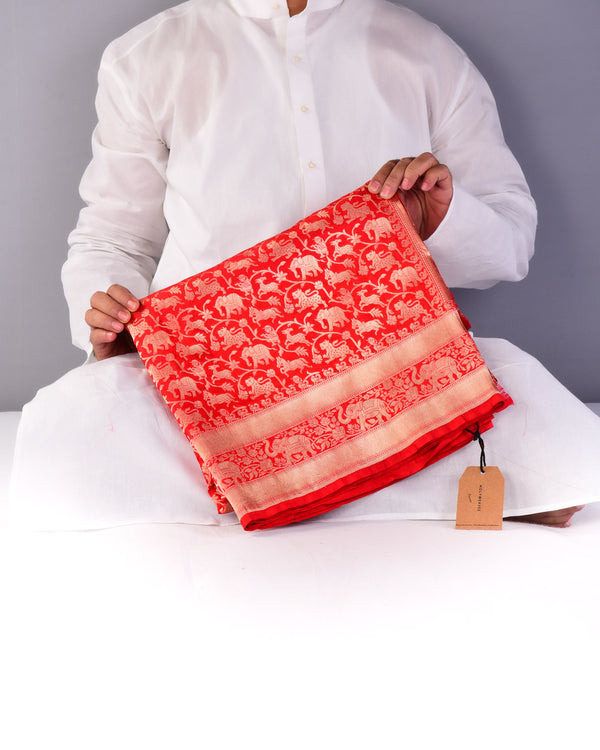 Red Banarasi Shikargah (शिकारगाह) Cutwork Brocade Saree with Elephant Trail Border-HolyWeaves