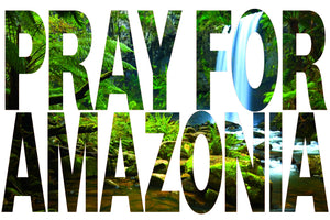 #PrayForAmazonia Wildfires Threaten Largest Ecosystems on Earth!