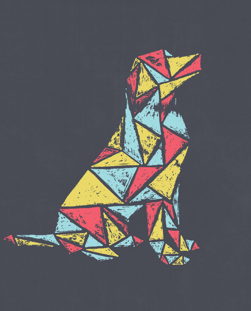 Geometry Dog Flowy Raglan