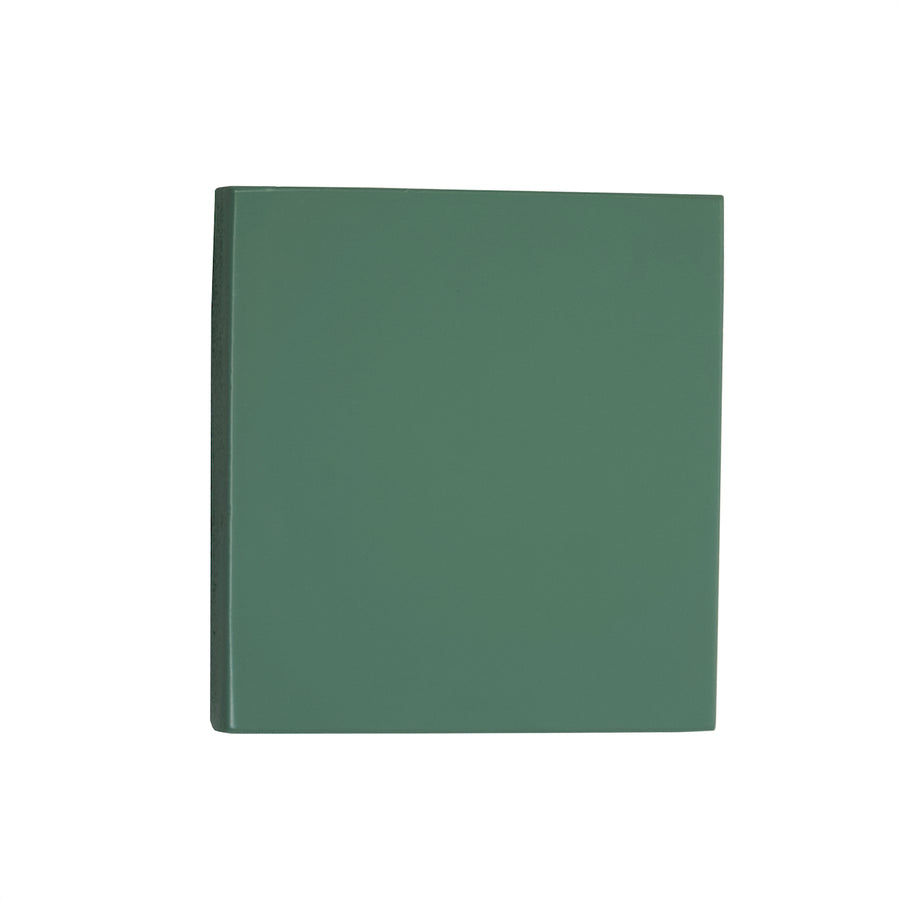 Sage Green Paint Swatch