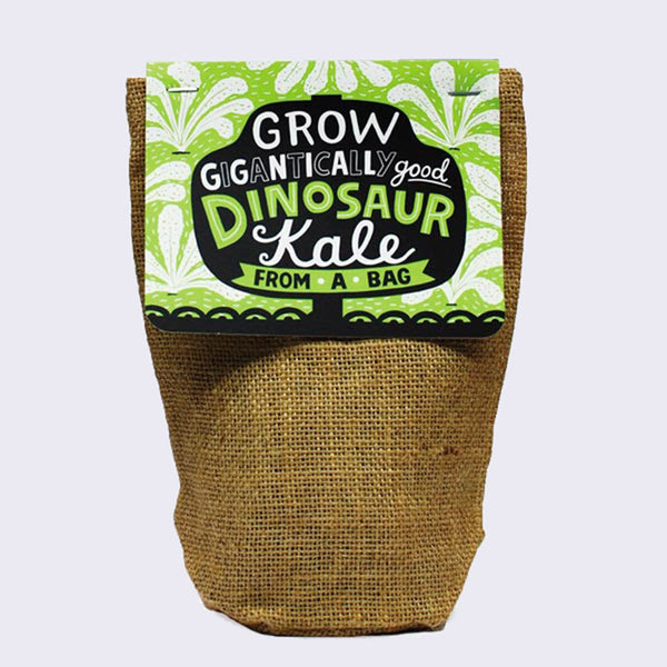 Grow From A Bag (Dinosaur Kale)