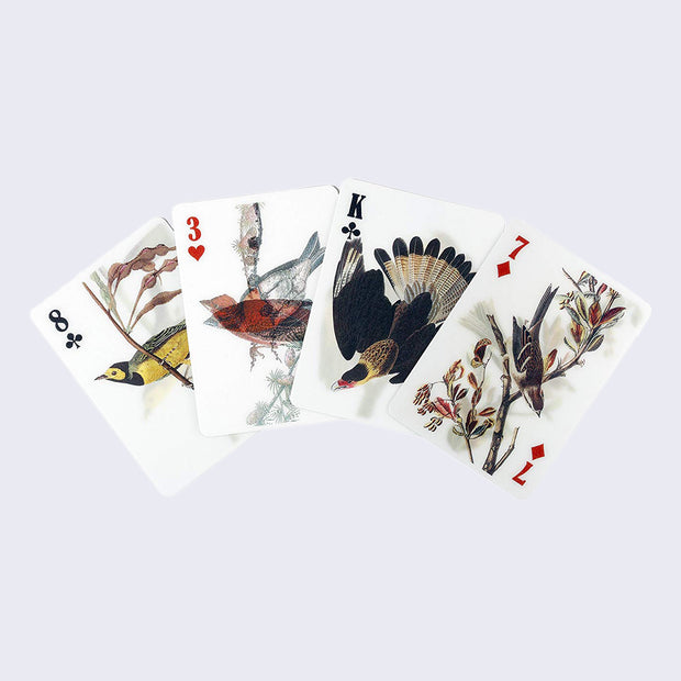 3-D Bird Playing Cards