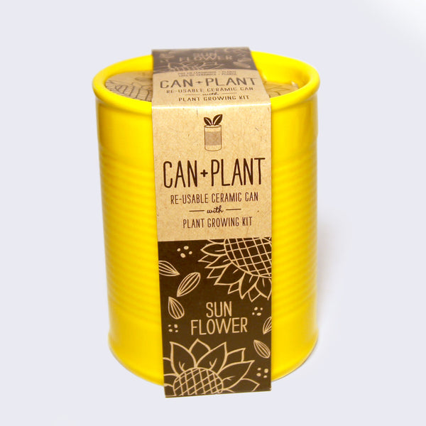 Can + Plant Color Ceramic Growing Kit (Assorted)
