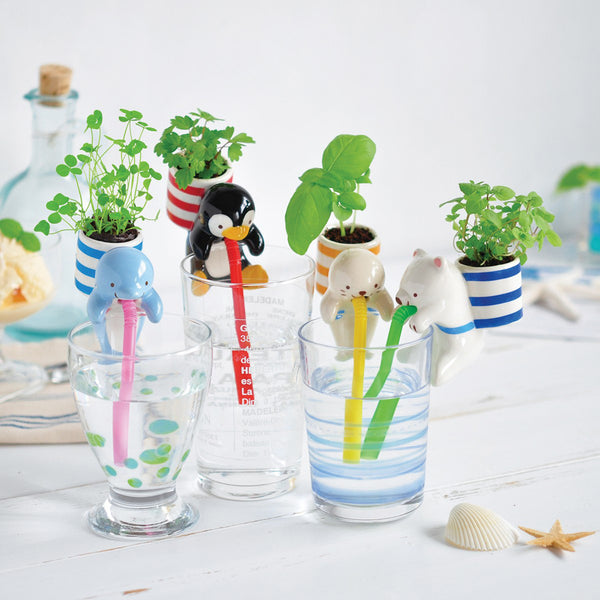 Chuppon - Self-Watering Animal Planter (Dolphin & Clover)
