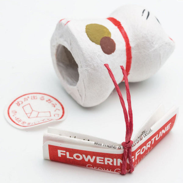 Flowering Fortunes (Assorted)