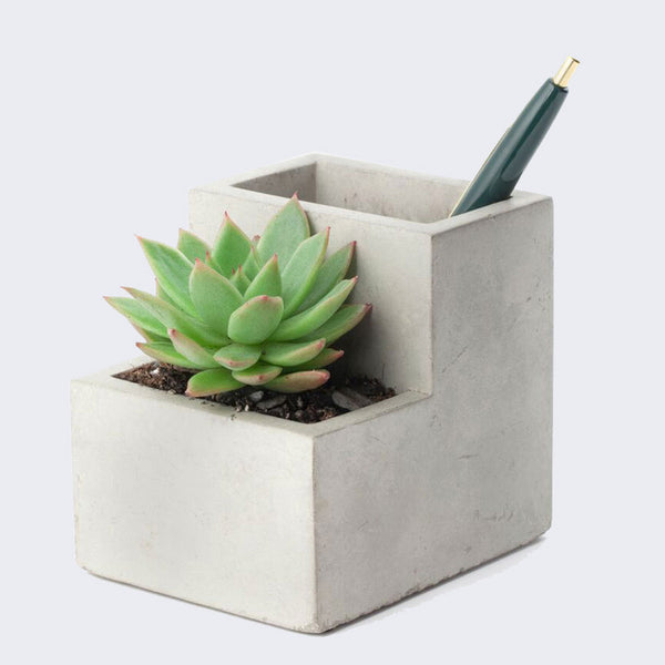 Concrete Desk Planter (Small)