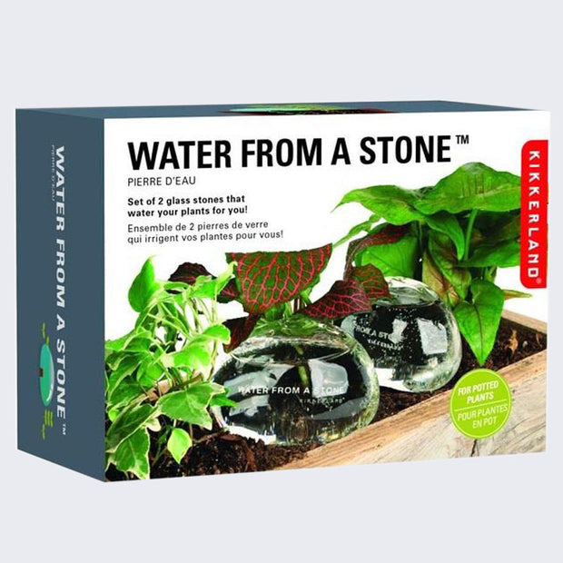 Water From a Stone (Glass Self Watering System)