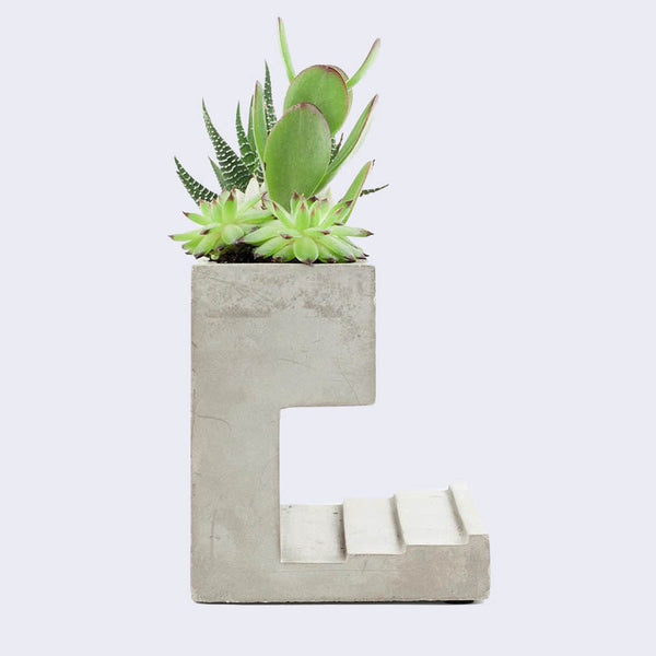Concrete Desk Planter (Large)
