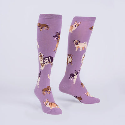 Stay Pawsitive Knee High Socks