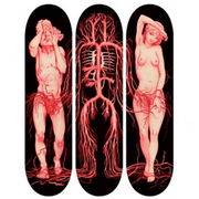 From the Vault: James Jean x Giant Robot - Exit Eden Skate Decks (Set of 3) - Remainder F