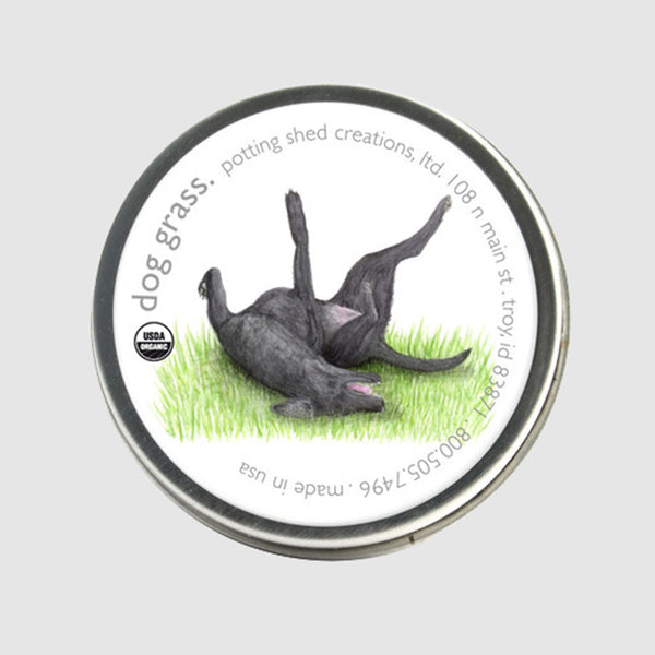 Dog Grass Seed Sprinkle