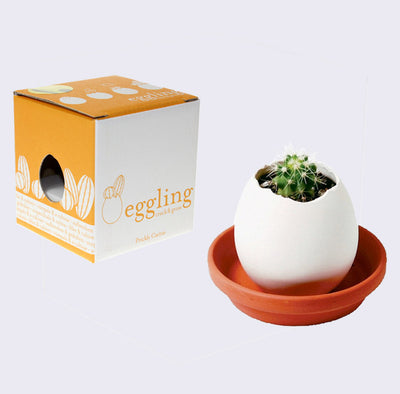 Eggling - Prickly Cactus