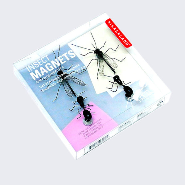 Insect Magnets (Set of 4)